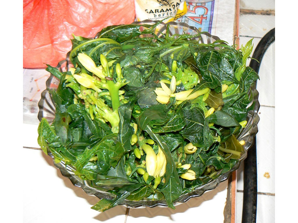 Papaya-leaves-flowers-jukut-cooked-aug-07.jpg