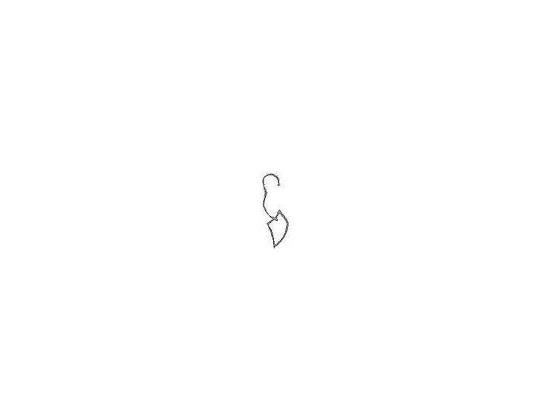 earjewel-anting.anting.jpg
