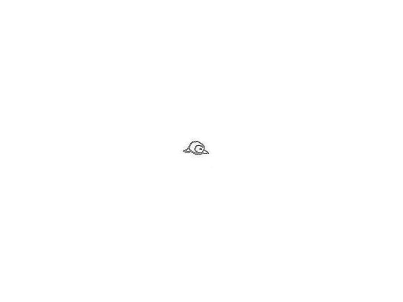 eye-bulet-round.jpg