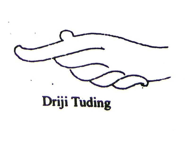 hands-driji tuding-pointing-sunarto 118.jpg