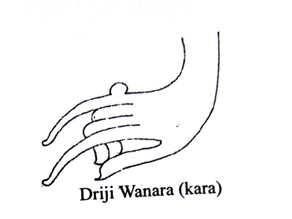 hands-driji-wanara-monkey-hand-Sunarto-118.jpg