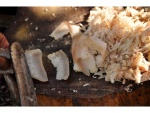 pebat-pork-fat-kramb-4.11.11-bis.jpg