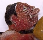 Brayut-Ki-EP 25-Pesisiran-head-lft-pox-c.W.Angst.jpg