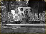 dalang Buleleng-opstelling, 1910-1925-tif.jpg